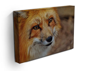 Fuchs Print - Canvas Art Rocks - 3