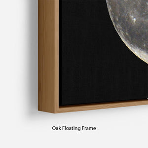 Full Moon Floating Frame Canvas - Canvas Art Rocks - 10