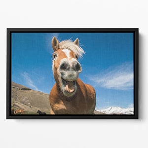 Funny shot of horse with crazy expression Floating Framed Canvas - Canvas Art Rocks - 2
