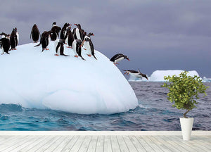 Gentoo penguin jumping into water Wall Mural Wallpaper - Canvas Art Rocks - 4