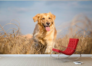 Golden retriever dog running outdoor Wall Mural Wallpaper - Canvas Art Rocks - 2