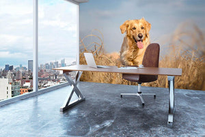Golden retriever dog running outdoor Wall Mural Wallpaper - Canvas Art Rocks - 3