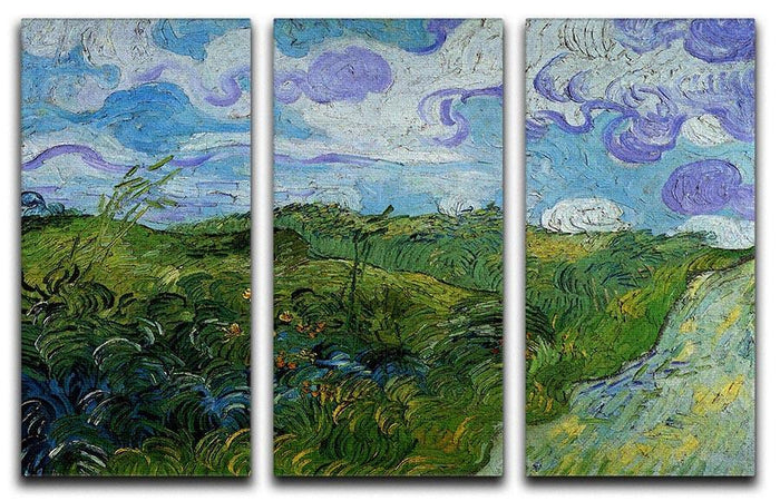 Green Wheat Fields by Van Gogh 3 Split Panel Canvas Print