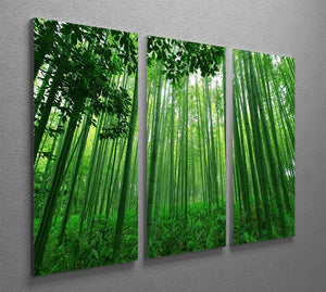 Green bamboo forest 3 Split Panel Canvas Print - Canvas Art Rocks - 2