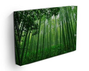 Green bamboo forest Canvas Print or Poster - Canvas Art Rocks - 3