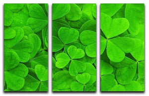 Green clover leaf 3 Split Panel Canvas Print - Canvas Art Rocks - 1