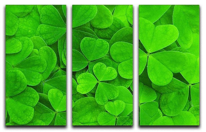 Green clover leaf 3 Split Panel Canvas Print