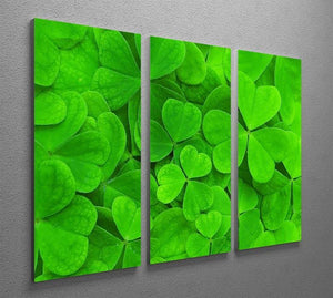 Green clover leaf 3 Split Panel Canvas Print - Canvas Art Rocks - 2