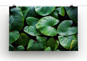 Green plant Canvas Print or Poster - Canvas Art Rocks - 2