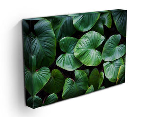 Green plant Canvas Print or Poster - Canvas Art Rocks - 3