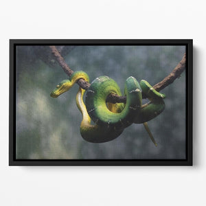 Green snake hangs on branch Floating Framed Canvas - Canvas Art Rocks - 2