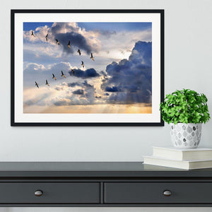 Group of Canadian geese flying in V-formation Framed Print - Canvas Art Rocks - 1