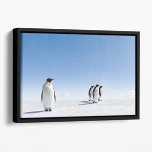 Group of Emperor Penguins in Antarctica Floating Framed Canvas - Canvas Art Rocks - 1