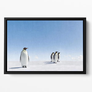Group of Emperor Penguins in Antarctica Floating Framed Canvas - Canvas Art Rocks - 2