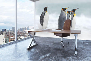 Group of four King penguins Wall Mural Wallpaper - Canvas Art Rocks - 3