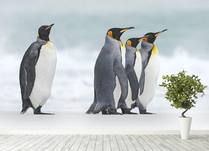 Group of four King penguins Wall Mural Wallpaper - Canvas Art Rocks - 4