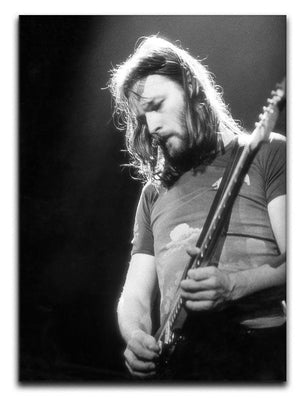 Guitarist David Gilmour Canvas Print or Poster  - Canvas Art Rocks - 1