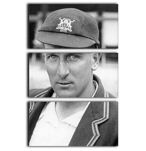 Harold Larwood, cricketer 3 Split Panel Canvas Print - Canvas Art Rocks - 1