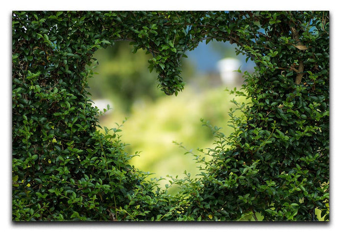Encarved Heart In Bush Canvas Print or Poster