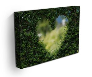 Encarved Heart In Bush Print - Canvas Art Rocks - 3