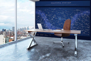 High detailed star map with names of stars contellations Wall Mural Wallpaper - Canvas Art Rocks - 3