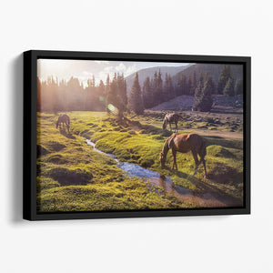 Horses in the Gregory gorge mountains Floating Framed Canvas - Canvas Art Rocks - 1