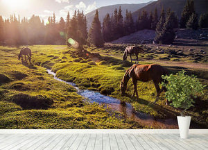 Horses in the Gregory gorge mountains Wall Mural Wallpaper - Canvas Art Rocks - 4