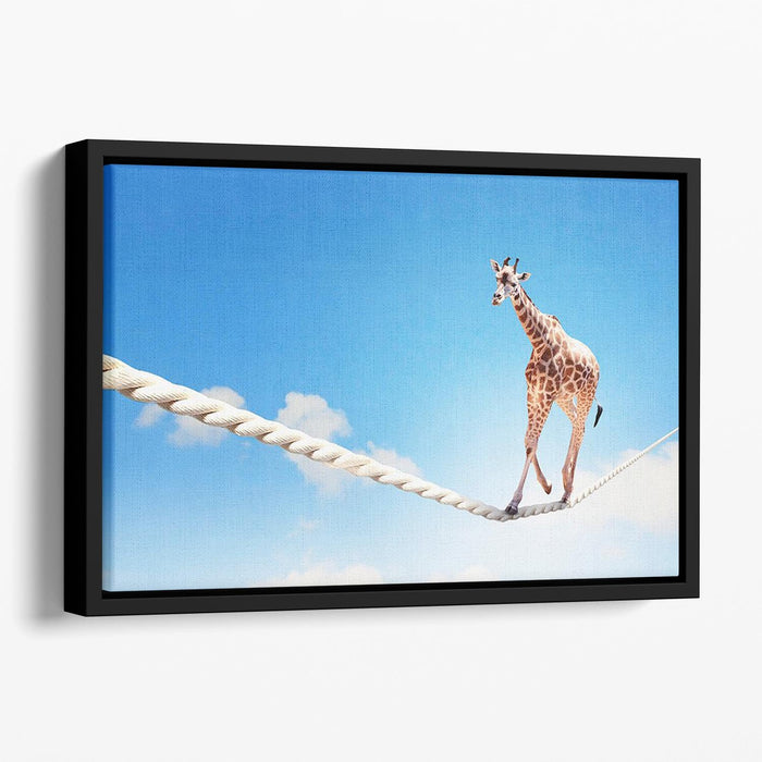 Image of giraffe walking on rope high in sky Floating Framed Canvas