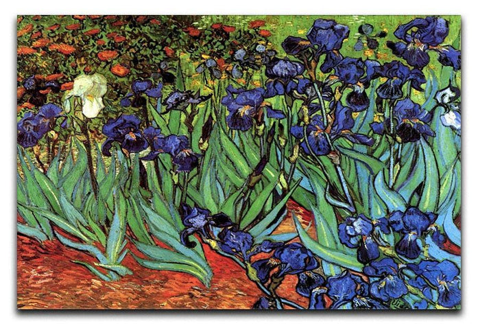 Irises 2 by Van Gogh Canvas Print or Poster