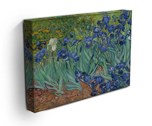 Irises Canvas Print & Poster - Canvas Art Rocks - 3