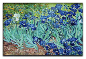 Irises by Van Gogh Canvas Print & Poster  - Canvas Art Rocks - 1