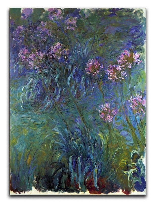 Jewelry lilies by Monet Canvas Print or Poster