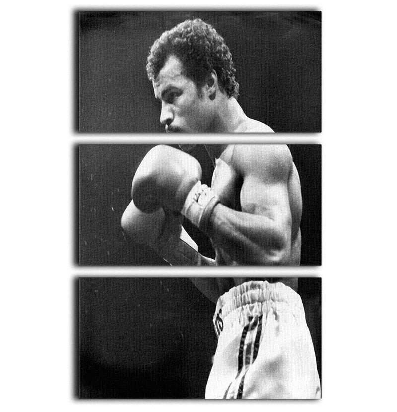 John Conteh boxer 3 Split Panel Canvas Print - Canvas Art Rocks - 1