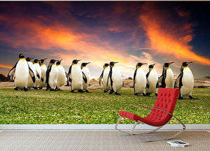 King Penguins in the Falkland Islands Wall Mural Wallpaper - Canvas Art Rocks - 2