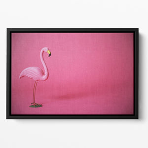 Kitsch pink flamingo in studio Floating Framed Canvas - Canvas Art Rocks - 2