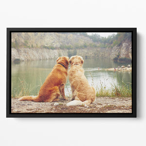 Lake for swimming. Two golden retriever dogs Floating Framed Canvas - Canvas Art Rocks - 2