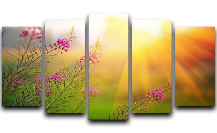 Landscape with Fireweed at sunny summer 5 Split Panel Canvas
