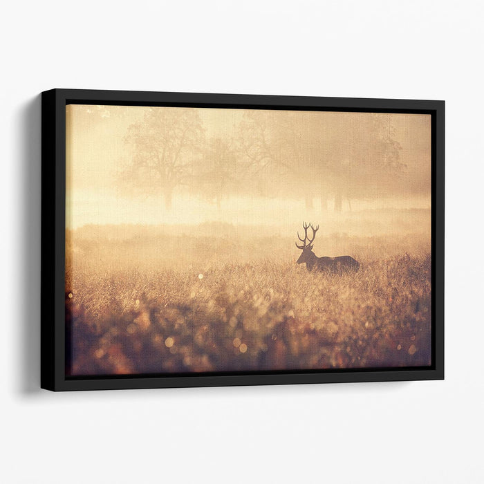 Large red deer stag silhouette in autumn mist Floating Framed Canvas