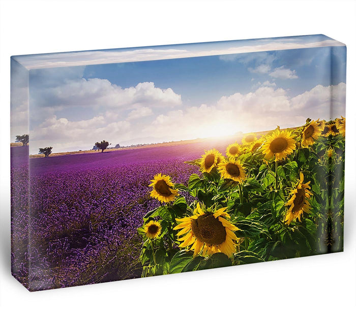 Lavender and sunflowers fields Acrylic Block