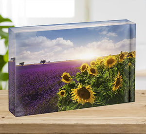 Lavender and sunflowers fields Acrylic Block - Canvas Art Rocks - 2