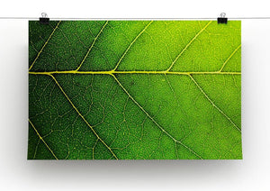 Leaf macro shot Canvas Print or Poster - Canvas Art Rocks - 2