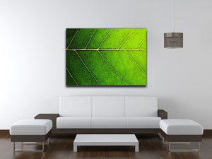 Leaf macro shot Canvas Print or Poster - Canvas Art Rocks - 4