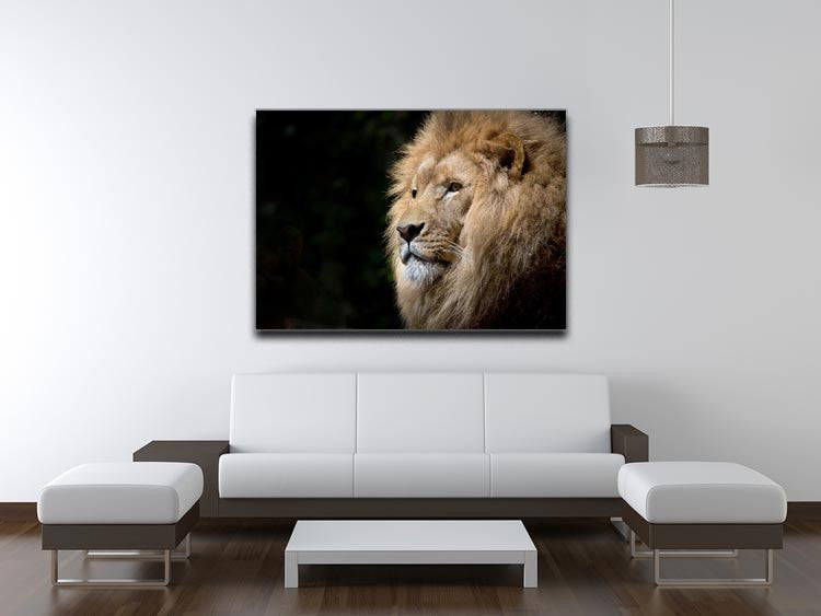 Lion Up Close Print - Canvas Art Rocks - 4