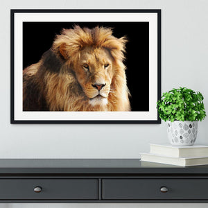 Lion head Framed Print - Canvas Art Rocks - 1
