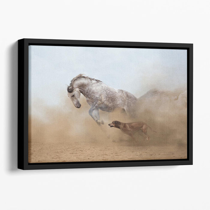 Lusitanian horse is playing with the Rhodesian Ridgeback dog Floating Framed Canvas