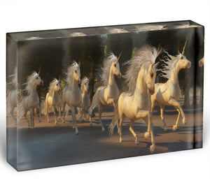 Magical Unicorn Forest Acrylic Block - Canvas Art Rocks - 1