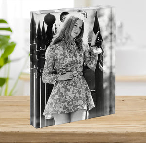 Mary Hopkin singer Acrylic Block - Canvas Art Rocks - 2