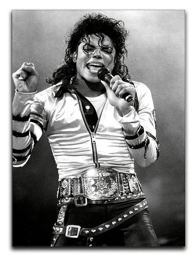 Michael Jackson Live Canvas Print or Poster