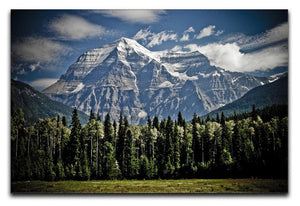 Mountain With Trees Print - Canvas Art Rocks - 1