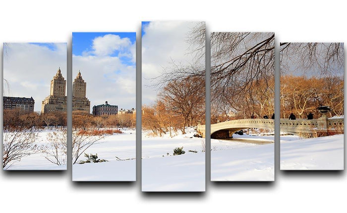 New York Manhattan Central Park panorama winter 5 Split Panel Canvas